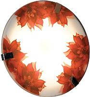 Потолочный светильник Lussole LSN-5252-01 -