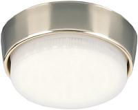 Точечный светильник Elektrostandard 1037 GX53 GD -