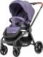 Детская прогулочная коляска Carrello Epica CRL-8509 (persian purple) -