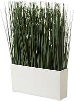 Искусственное растение Ikea Фейка 403.719.56 -