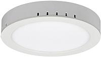 Точечный светильник Elektrostandard DLR020 18W 4200K -
