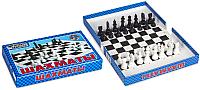 Шахматы Десятое королевство 01457 -