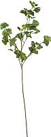 Искусственное растение Ikea Смикка 103.805.23 -