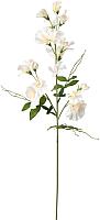 Искусственный цветок Ikea Смикка 504.097.51 -