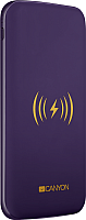 Портативное зарядное устройство Canyon CNS-TPBW8P -