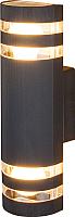 Светильник уличный Elektrostandard 1443 Techno (черный) -