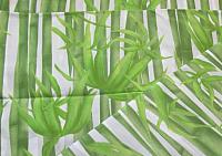 Шторка-занавеска для ванны Miranda Bamboos Green -