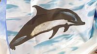 Шторка-занавеска для ванны Miranda Black Dolphin -