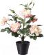 Искусственный цветок Ikea Фейка 103.952.99 -