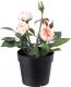 Искусственный цветок Ikea Фейка 203.952.94 -