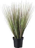 Искусственное растение Ikea Фейка 403.953.11 -