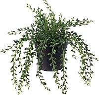 Искусственное растение Ikea Фейка 503.953.39 -