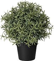 Искусственное растение Ikea Фейка 703.821.14 -