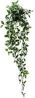 Искусственное растение Ikea Фейка 803.495.48 -