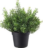 Искусственное растение Ikea Фейка 803.953.33 -