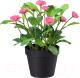 Искусственный цветок Ikea Фейка 903.953.42 -