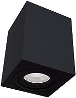 Потолочный светильник Maytoni Alfa C017CL-01B -