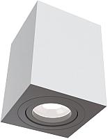 Потолочный светильник Maytoni Alfa C017CL-01W -