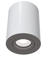 Точечный светильник Maytoni Alfa C016CL-01W -