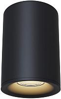 Потолочный светильник Maytoni Alfa C012CL-01B -