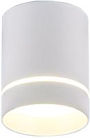 Точечный светильник Elektrostandard DLR021 9W 4200K (белый матовый) -