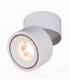 Точечный светильник Elektrostandard DLR031 15W 4200K 3100 (белый матовый) -