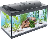 Аквариумный набор Tetra Starter Line Tank LED / 710647/256989 (черный) -