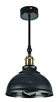Потолочный светильник Decora 12200 -