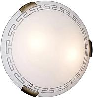 Светильник Sonex Greca 161/K -