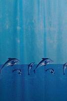 Шторка-занавеска для ванны Miranda Whale -