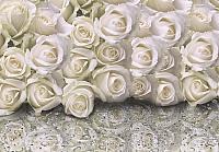 Фотообои листовые Citydecor Розы с каплями росы (200x140) -