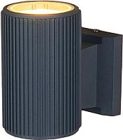 Бра уличное Elektrostandard 1404 Techno (серый) -