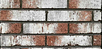 Декоративный камень РокСтоун Tsegla Рузенбергский кирпич 905П (красный) -