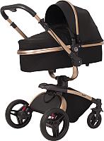 Детская универсальная коляска Rant Nest 2 в 1 / RA889 (черный) -