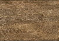 Плитка Tubadzin Magnetia Wood (250x360) -