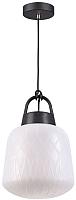 Потолочный светильник Novotech Conte 370601 -