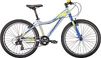 Велосипед Format 6424 2019 / RBKM9J647004 (24, серебристый) -