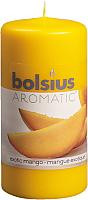Ароматическая свеча Bolsius Манго / 120/60 -