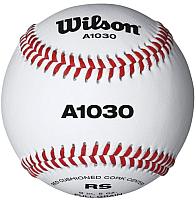 Бейсбольный мяч Wilson Championship / WTA1030FS (белый) -