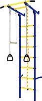 Детский спортивный комплекс Romana Пристенный ДСКМ-2С-7.06.Г3.410.13-24 (синий/желтый) -