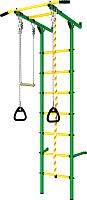 Детский спортивный комплекс Romana Пристенный ДСКМ-2С-7.06.Г3.410.14-24 (зеленый/желтый) -