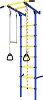 Детский спортивный комплекс Romana Пристенный ДСКМ-2С-7.06.Г3.410.14-24 (синий/желтый) -