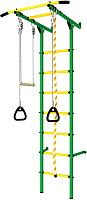 Детский спортивный комплекс Romana Пристенный ДСКМ-2С-7.00.Г3.410.14-24 (зеленый/желтый) -