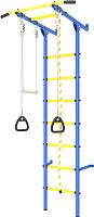 Детский спортивный комплекс Romana Пристенный ДСКМ-2С-7.00.Г3.410.14-24 (синий/желтый) -
