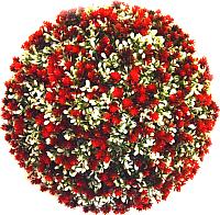Искусственное растение Green Fly Самшит Гармония / С-3-28 -
