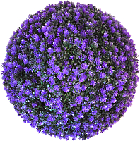 Искусственное растение Green Fly Самшит Лаванда / С-8-39 -