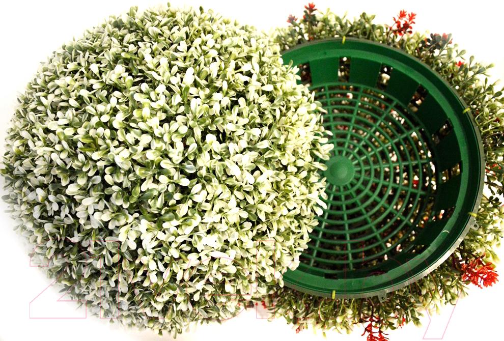 Купить Искусственное растение Green Fly, Самшит полусфера Вальс / СП-5-28, Беларусь