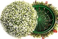 Искусственное растение Green Fly Самшит полусфера Вальс / СП-5-28 -