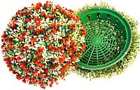 Искусственное растение Green Fly Самшит полусфера Полянка / СП-9-39 -