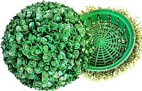 Искусственное растение Green Fly Самшит полусфера Амазонка / СП-11-31 -